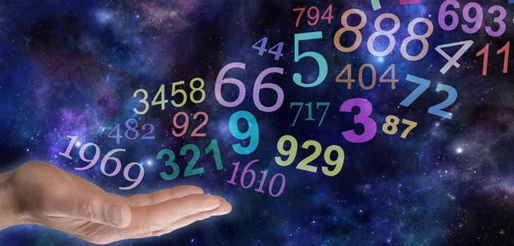 Number System Origins